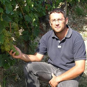 Tranchero Osvaldo Mango - Rotweine