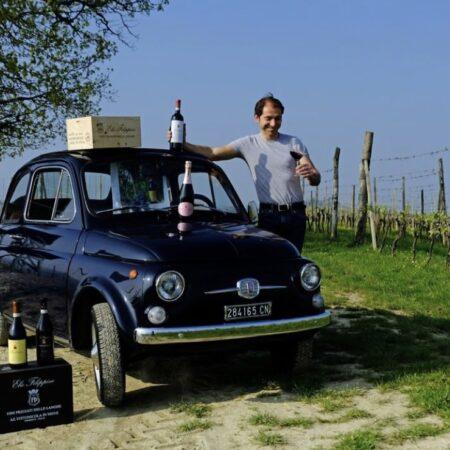 Elio Filippino - Rotweine